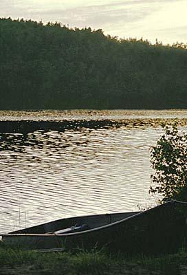 Morning on Little Wilson Pond.jpg